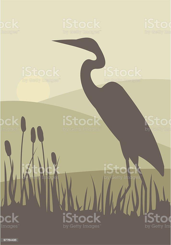 Heron vector art illustration