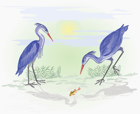 Herons on the hunt vector