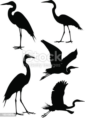 A collection of five heron silhouettes. For other bird silhouettes see #7623647,#5638470,#3933454