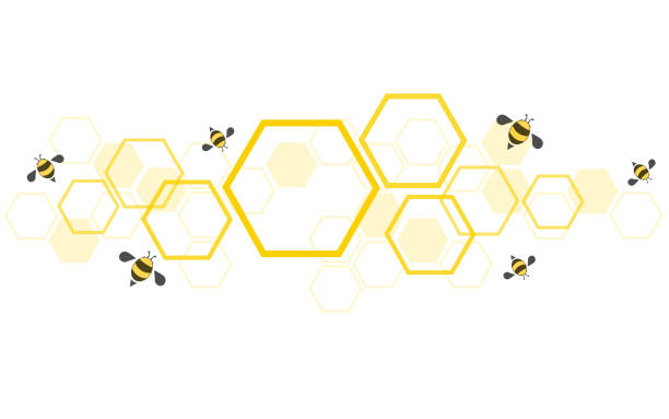 hexagon bee hive design art and space background vector EPS10 hexagon bee hive design art and space background vector EPS10 beehive stock illustrations