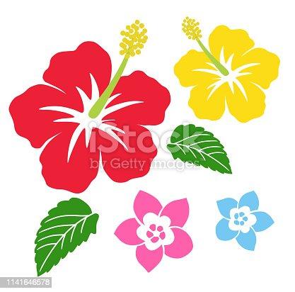 Hibiscus and plumeria icon