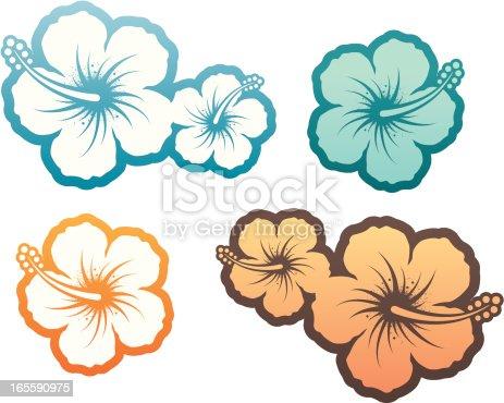 istock Hibiscus design element 165590975