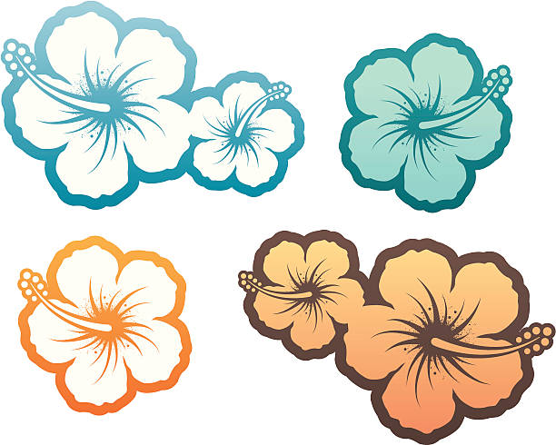 Hibiscus design element Hibiscus design elements. Hires jpeg 300 dpi + CS3 AI file included. Similar illustrations - see my portfolio... big island hawaii islands stock illustrations