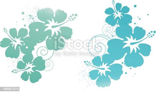 istock Hibiscus design elements 165557374