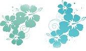 Hibiscus design elements