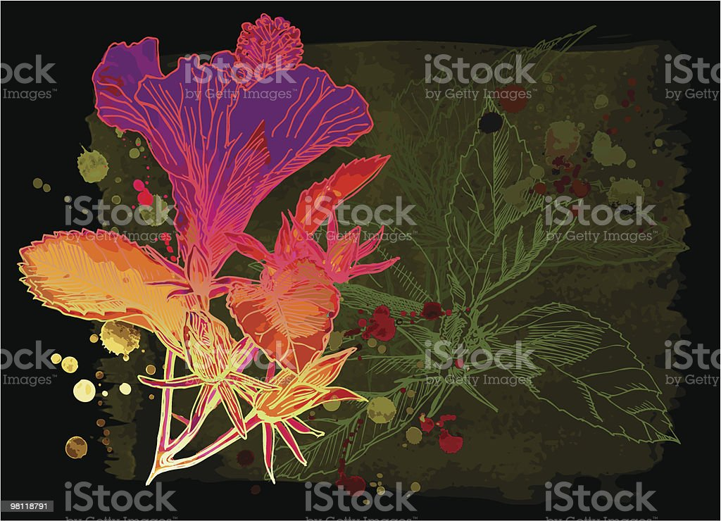 Hibiscus flower & blackbackground royalty-free hibiscus flower blackbackground stock vector art & more images of art