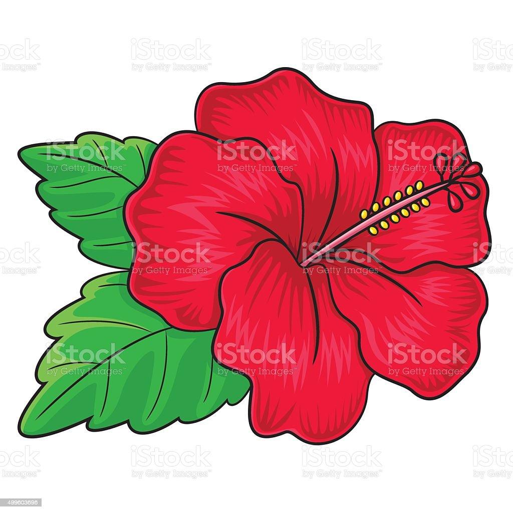 Hibiscus flower cartoon stock vector art more images of 2015 hibiscus flower cartoon royalty free hibiscus flower cartoon stock vector art amp more images izmirmasajfo