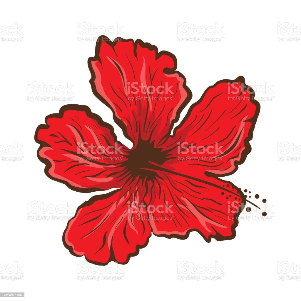 Hibiscus flower in tattoo style black and white graphic tropical hibiscus flower in tattoo style black and white graphic tropical flower royalty free izmirmasajfo