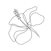 Hibiscus flower in one line art drawing style. Minimalist black line sketch on white background. Vector illustration