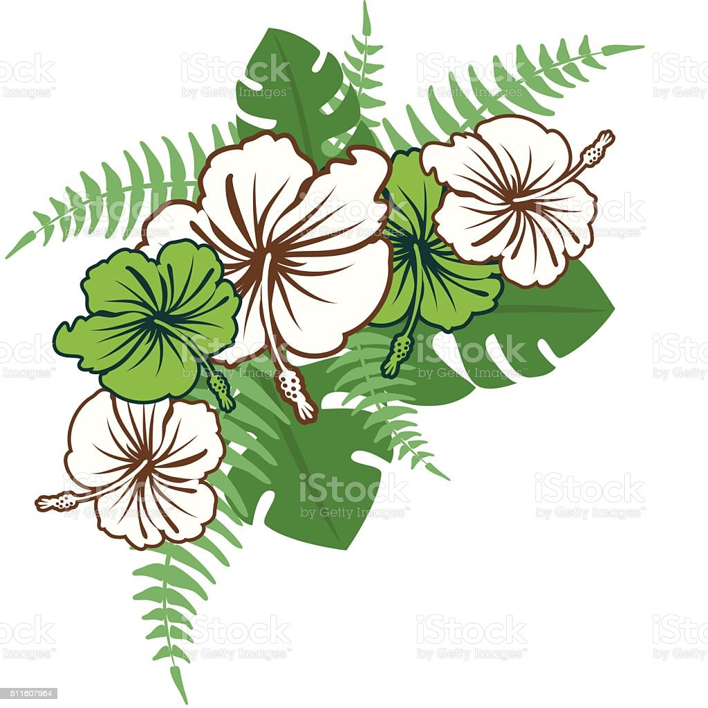 Hibiscus Flowers And Ferns Corner Element Stock Vector Art More
