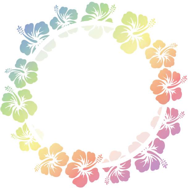 bildbanksillustrationer, clip art samt tecknat material och ikoner med hibiscus blommor ram - delstat hawaii