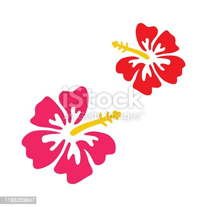 Pink and red hibiscus vector graphic. Set of two hibiscus flowers isolated on white background.