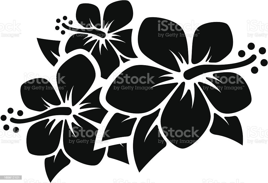 royalty free hawaiian flowers clip art vector images rh istockphoto com hawaiian hibiscus flower vector hawaiian flower vector art