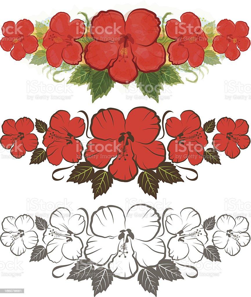 Hibiscus flowers vector art illustration