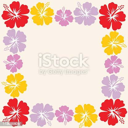 Vector hibiscus frame .