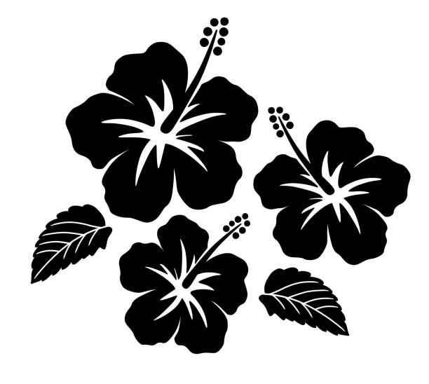 Hibiscus icon set Hibiscus icon set big island hawaii islands stock illustrations
