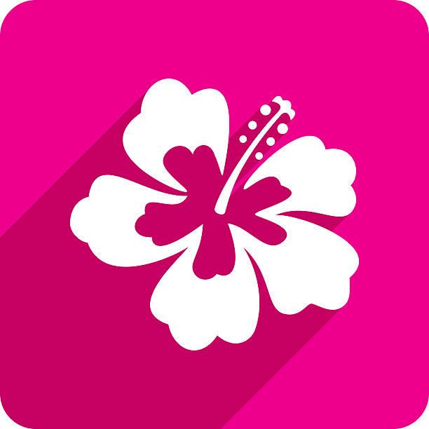 hibiskus symbol kontur - hibiskusgarten stock-grafiken, -clipart, -cartoons und -symbole