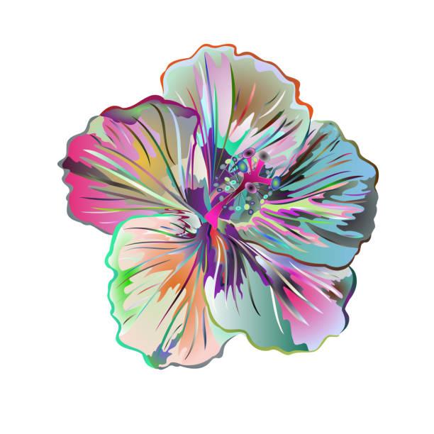 hibiskus viele bunte aquarell einfach tropische blumen auf einem weißen hintergrund vintage vektor - hibiskusgarten stock-grafiken, -clipart, -cartoons und -symbole