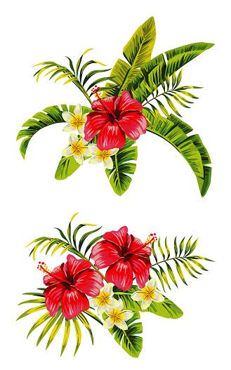 hibiscus plumeria bunches