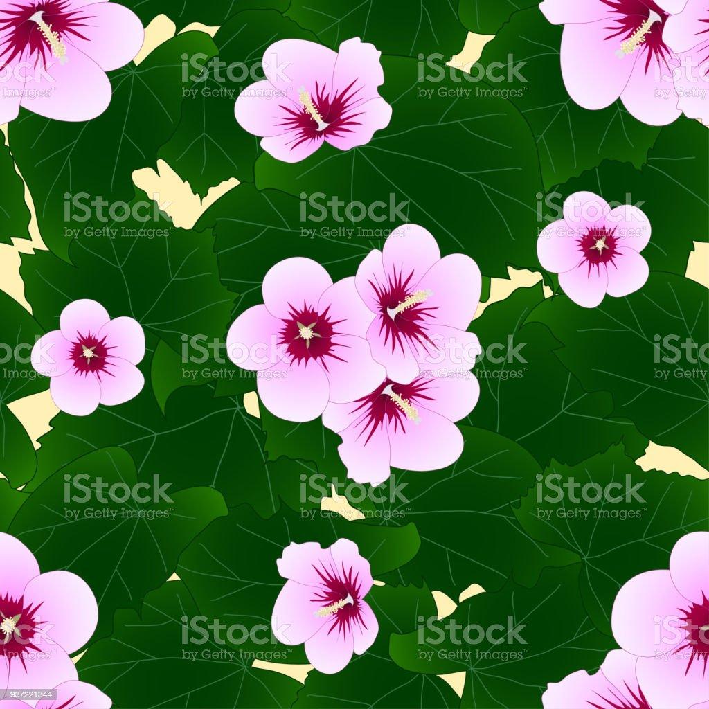 Hibiscus Syriacus Rose Of Sharon On Ivory Beige Background Stock