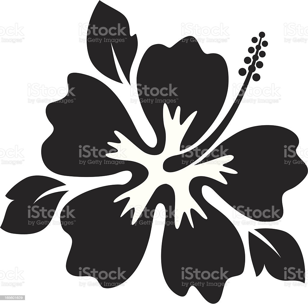 hibiscus royalty-free hibiscus stock vector art & more images of arts culture and entertainment