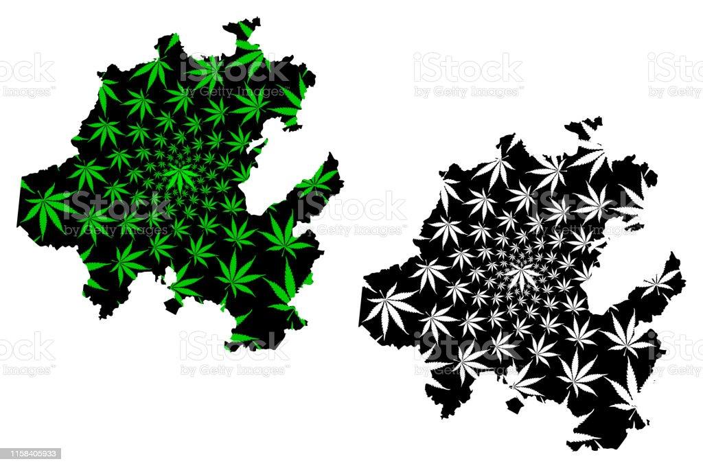 Ilustracion De Hidalgo Mapa Estatal Follaje Y Mas Vectores Libres