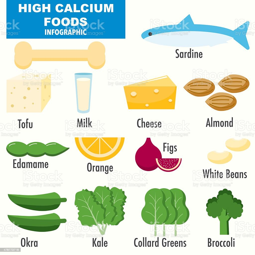 High Calcium Foods infographics vector art illustration