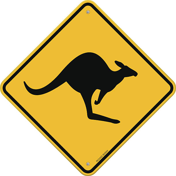 High Detail Kangaroo Sign Classic Australian Yellow Sign with Kangaroo danger information made till the last tiny detail. Fully scalable and easy to edit. EPS version 10 with transparency and AI CS5 included in download. kangaroo stock illustrations