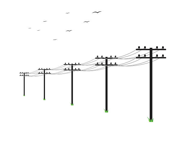 stockillustraties, clipart, cartoons en iconen met high voltage power lines - hoogspanningsmast