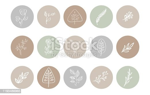 istock Highlight Cover Icon. Highlight Story Natural. Hand Drawn Floral Logo. Logo Template for photographer, fashion blogger, yoga studio. Monoline style Herb. Botanical Floral Illustrations 1193486965