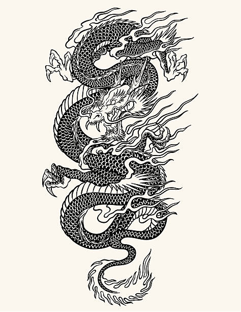 Highly detailed Asian dragon tattoo line-work Highly detailed Asian dragon tattoo line-work dragons tattoos stock illustrations
