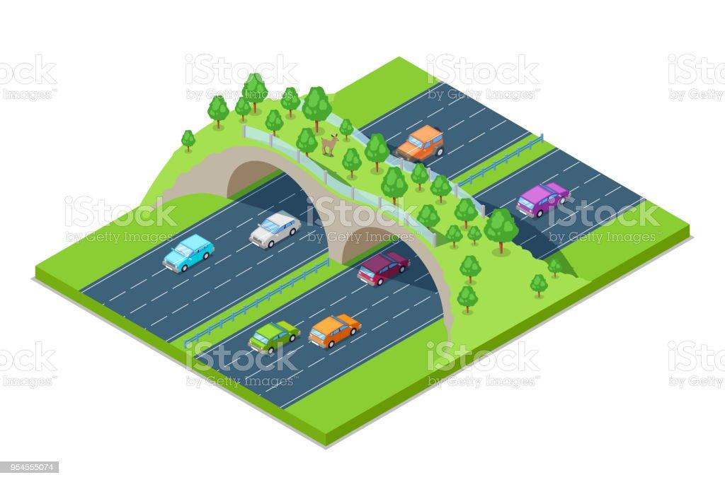 高速道路や道路上の動物の緑の橋。ベクター等尺性 3 D グラフィック。環境・ エコロジーを保存します。 ベクターアートイラスト