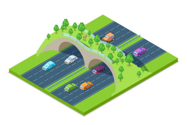 高速道路や道路上の動物の緑の橋。ベクター等尺性 3 d グラフィック。環境・ エコロジーを保存します。 - 野生動物旅行点のイラスト素材/クリップアート素材/マンガ素材/アイコン素材