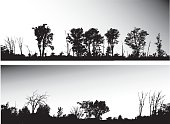 Highway Treeline