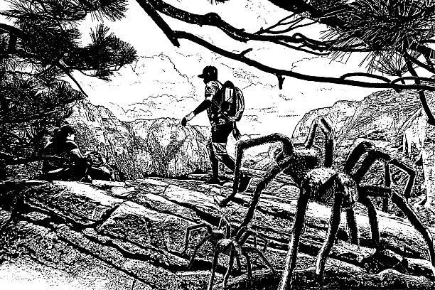 hikers and spiders - tarantula stock illustrations
