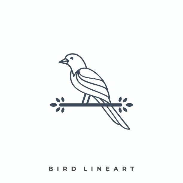 Hing Bird Illustration Vector Template Hing Bird Illustration Vector Template. Suitable for Creative Industry, Multimedia, entertainment, Educations, Shop, and any related business. songbird stock illustrations