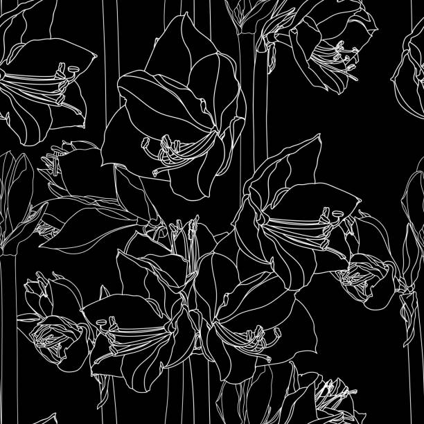 bildbanksillustrationer, clip art samt tecknat material och ikoner med hippeastrum lilly blommande blommor sömlösa mönster - amaryllis