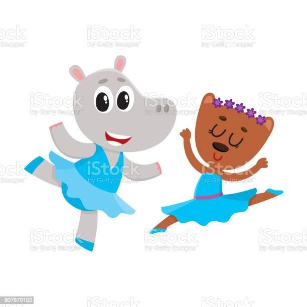 Hippo and bear puppy and kitten characters dancing ballet together vector id807870102?b=1&k=6&m=807870102&s=612x612&h=okll zjuwniysxevgyx i8zg7dbyxzwxbtnxx27uhtg=