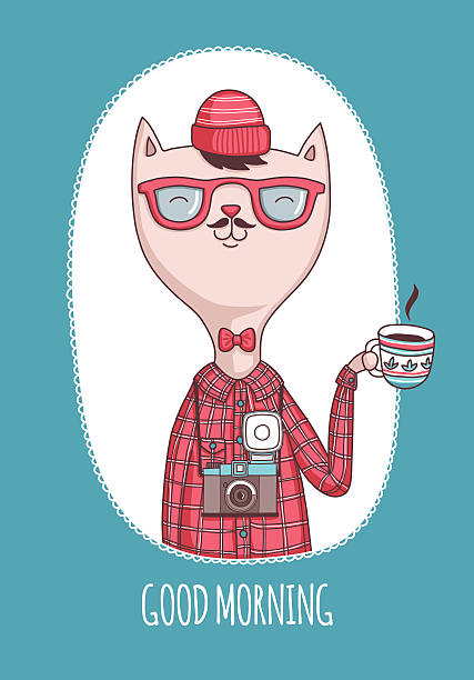 hipster cat - old man funny pictures stock illustrations, clip art, cartoons, & icons