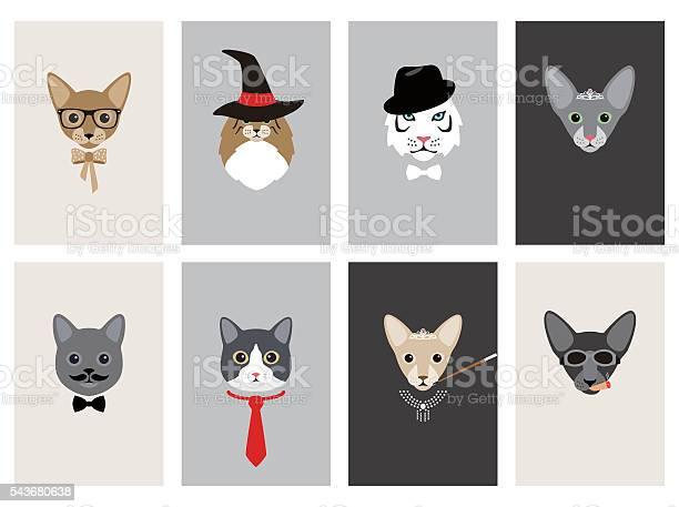 Hipster portrait of cat gentlemen cat vector id543680638?b=1&k=6&m=543680638&s=612x612&h=fx0u36r7jjzhyx5vycx4mltykjfmdmjx jpaalszltq=