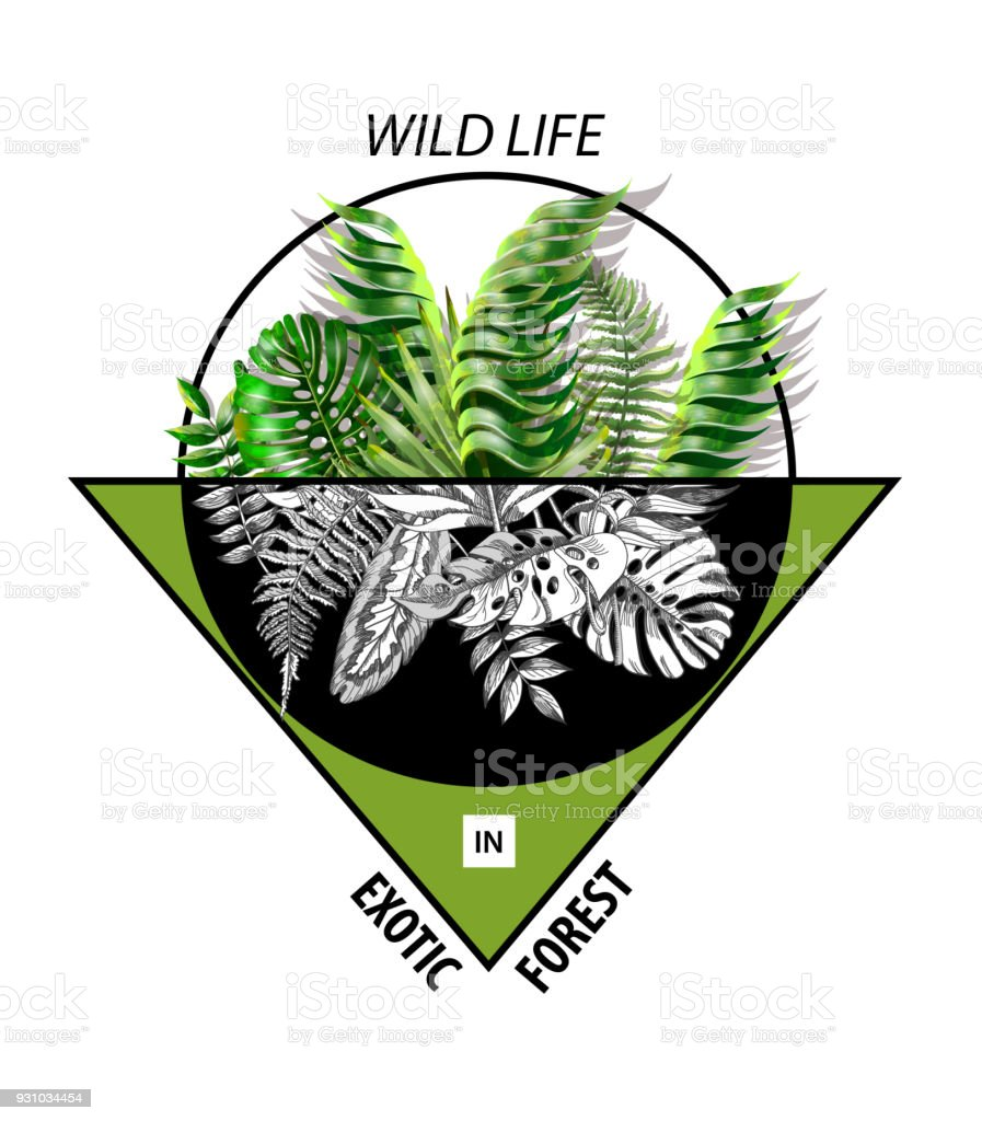 Hipster Print For Tshirt Or Banner With Tropical Leaves Stock Illustration Download Image Now Istock Hawaii tee print with with tropical leaves. hipster print for tshirt or banner with tropical leaves stock illustration download image now istock