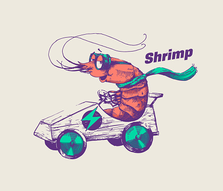 Hipster shrimp is riding an electric go cart vector illustration. Hand drawn racer crab wearing goggles and scarf racing with fast car. Line art design for posters and cool stickers.