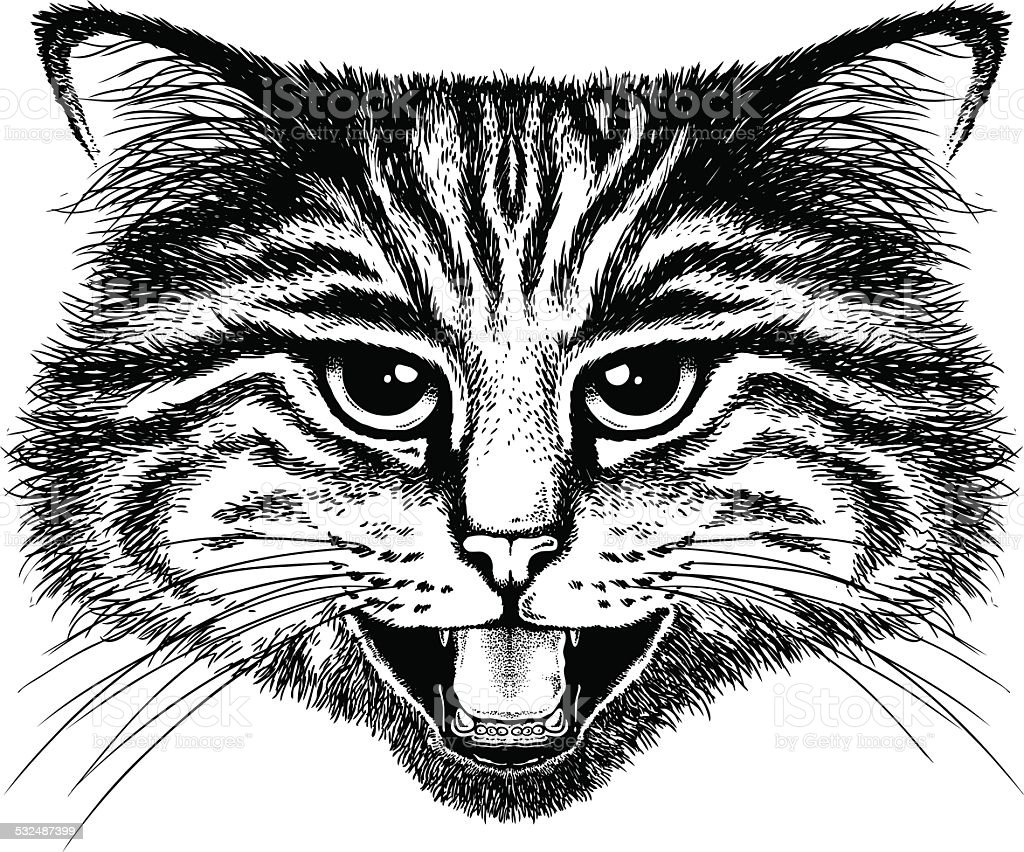 Hissing Cat Portrait vector art illustration