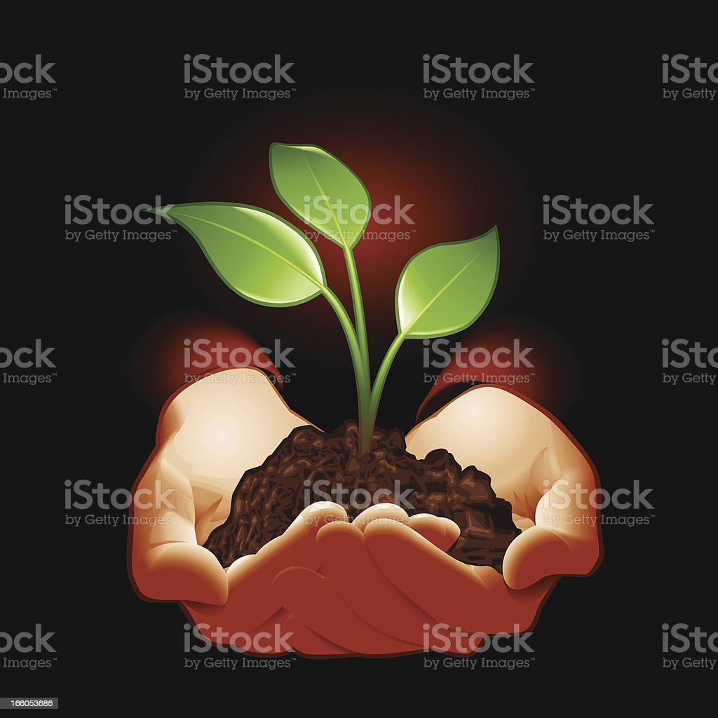 Hold Plant royalty-free hold plant stock vector art & more images of achievement