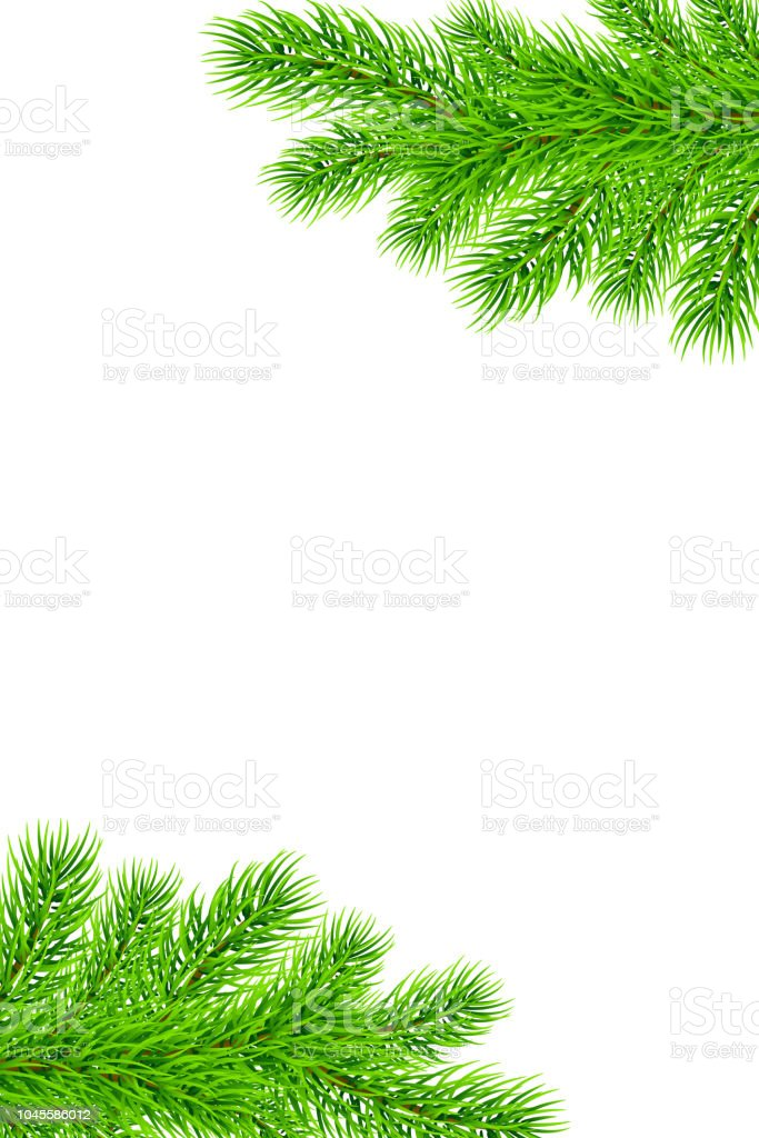 Holiday Christmas Frame With Fir Tree Branches Template For A Banner