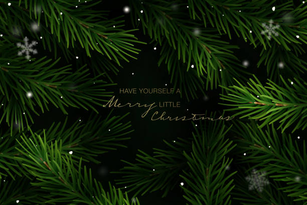 Holiday Greeting Card. Vector Illustration. Christmas frame with fir tree branches and hand lettering. Vector Illustration. close up stock illustrations