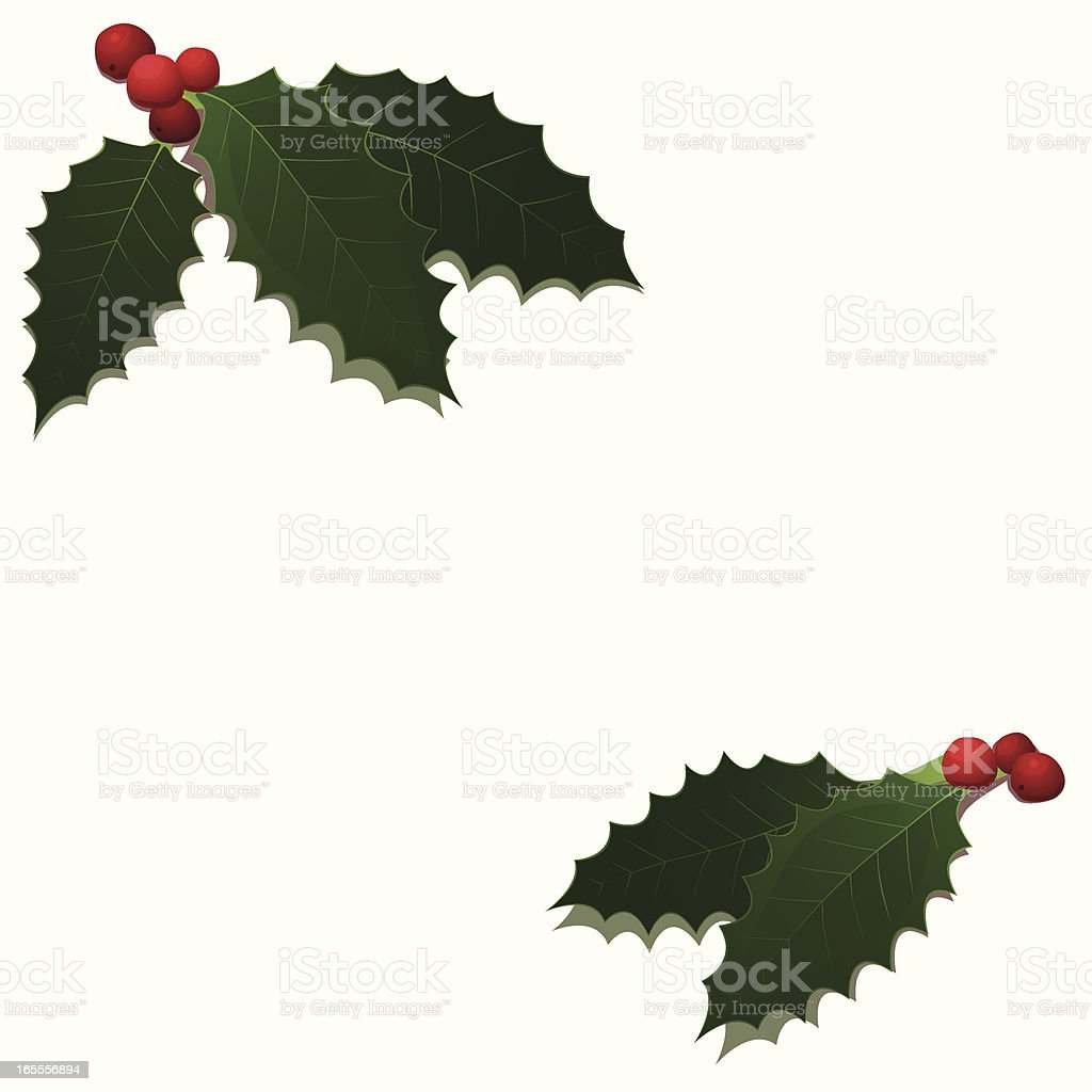Holly 2009 royalty-free holly 2009 stock vector art & more images of berry