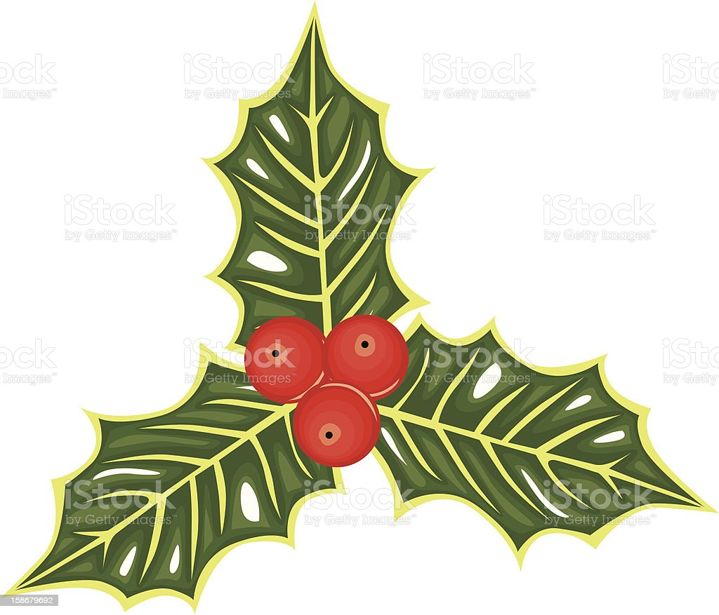 Holly berries royalty-free stock vector art