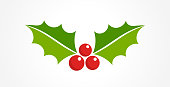 Holly berry Christmas icon. Element for design. Vector illustration