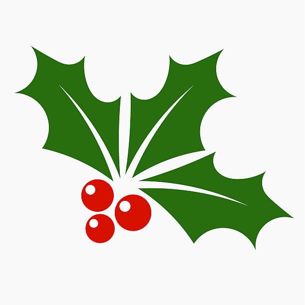 Holly berry icon Holly berry icon. Christmas symbol vector illustration clip art stock illustrations